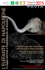 Elefante di Napoleone